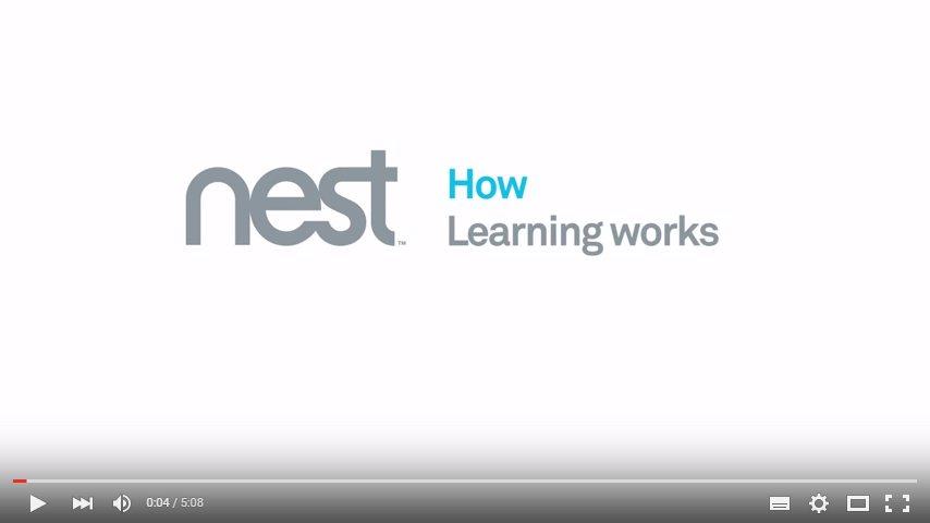 Jak se Nest učí